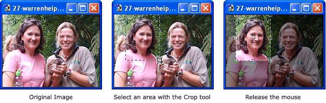 Menggunakan Crop Tool
